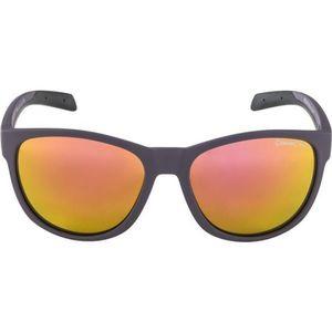 Alpina Sports NACAN II - Unisex slnečné okuliare vyobraziť